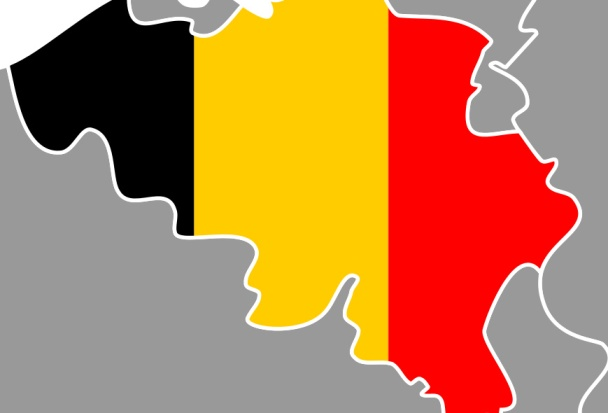 6.3% of Belgian deaths now E&AS